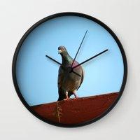 pigeon Wall Clocks featuring Pigeon by Lon Casler Bixby - Neoichi