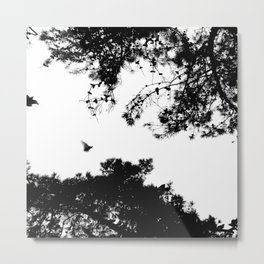 freedom to fly up to sky Metal Print