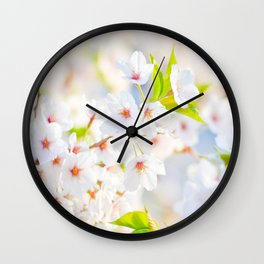 Beautiful White Blossoms In The Spring Sunlight Wall Clock