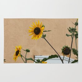 Santa Fe Sunflowers Rug