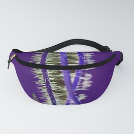 Congruence(3). Fanny Pack