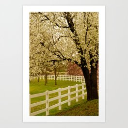 Spring Has Sprung! Art Print