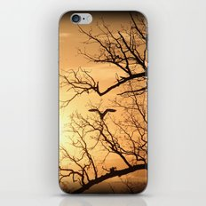 The Heron In The Evening iPhone & iPod Skin