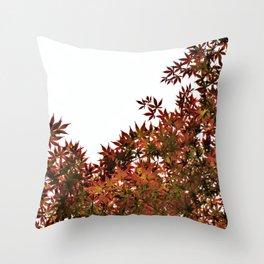 Changing of Seasons Throw Pillow