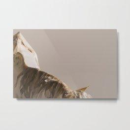 Mongrel Grey Metal Print
