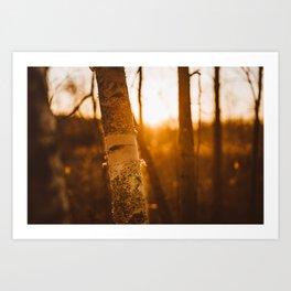 Beautiful Fricken Sunset Art Print