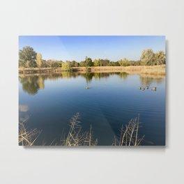 Ducks in an Autumn Pond Metal Print