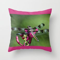The original biplane Throw Pillow