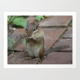 What peanut? Art Print
