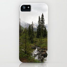 A Wanderer's Find iPhone Case