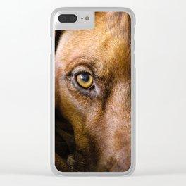 Rhodesian Ridgeback Nala Clear iPhone Case