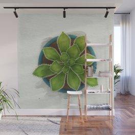 Succulent in pot Wall Mural