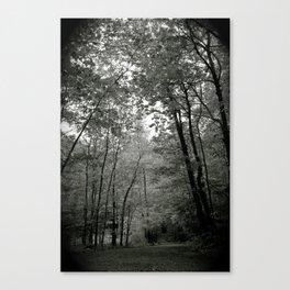 Trail Canvas Print