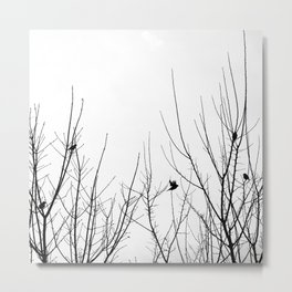 Birds on Branches Metal Print