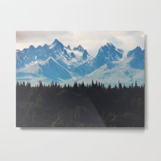 Mountain Valley Metal Print
