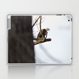 Eagle Hunting for Dinner Laptop & iPad Skin