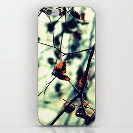 Aqua Leaves iPhone Skin