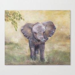 Baby Elephant Canvas Print