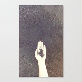 Handfull Canvas Print