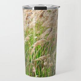 Blooming foxtail in summer sunny day Travel Mug