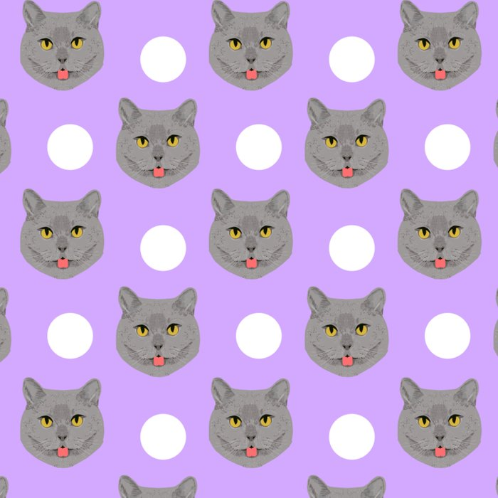 kai british shorthair cat gifts for cat lovers and cat lady gifts