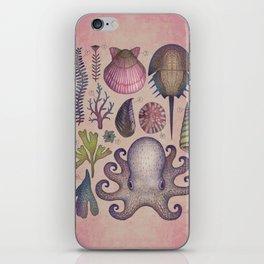 Aequoreus vita V / Marine life V iPhone Skin