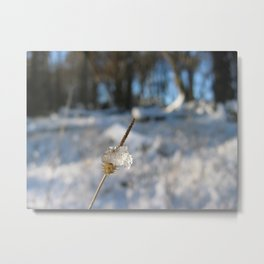 The Frozen Spike Metal Print