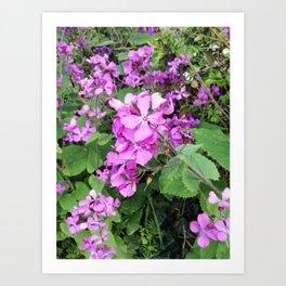 Flower Findings Art Print