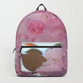 Cherry B3 Backpack