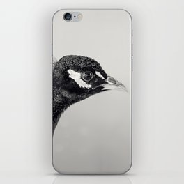 Peacock 2 iPhone Skin