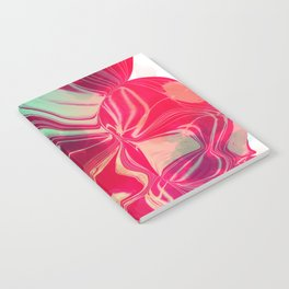Magnetic Disturbance Notebook