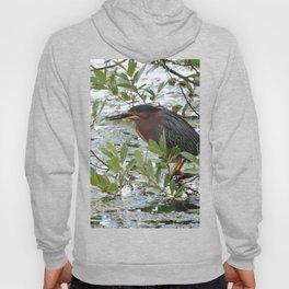 Green Heron at Lakeside Hoody