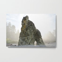 Wizard Hat Boulder Forest Beach Coast Coastal  Northwest Pacific Ocean Washington Rocky Geology Rock Metal Print