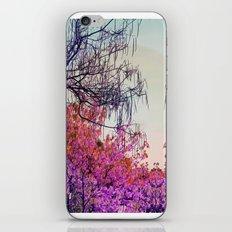 Dibujando un sol en el bosque iPhone & iPod Skin