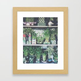 green bamboo plant in the vase pattern background Framed Art Print