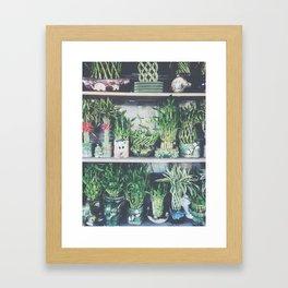 green bamboo plant in the vase pattern background Framed Art Print