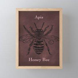 Honeybee Apis Framed Mini Art Print
