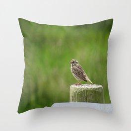 Savannah Sparrow at Nisqually Wildlife Refuge Throw Pillow
