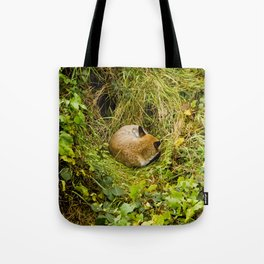 Mr Fox's afternoon nap Tote Bag