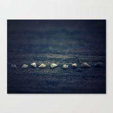 Tiny caravan Canvas Print