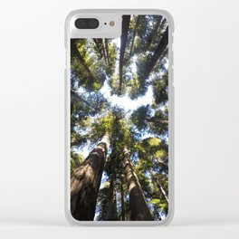 Giant Redwoods Clear iPhone Case