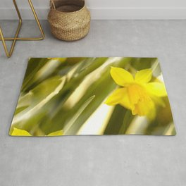 Spring atmosphere with yellow narcissus #decor #society6 #buyart Rug
