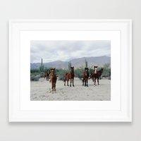 Framed Art Prints featuring Bahía de los Ángeles Wild Horses by Kevin Russ