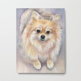 Pomeranian Watercolor Pom Puppy Dog Painting Metal Print