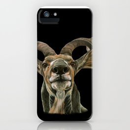 Greater African Kudu Painting iPhone Case
