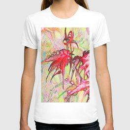 Laceleaf Maple T-shirt