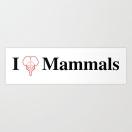 I Heart Mammals Art Print