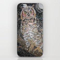 Owl Mosaic iPhone & iPod Skin