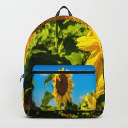 Here Comes the Sun - Giant Sunflower on Sunny Day in Kansas Backpack