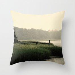 Rain on a summer day on Long Island Throw Pillow